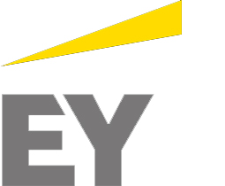 Ernst & Young (2007 – 2014)
